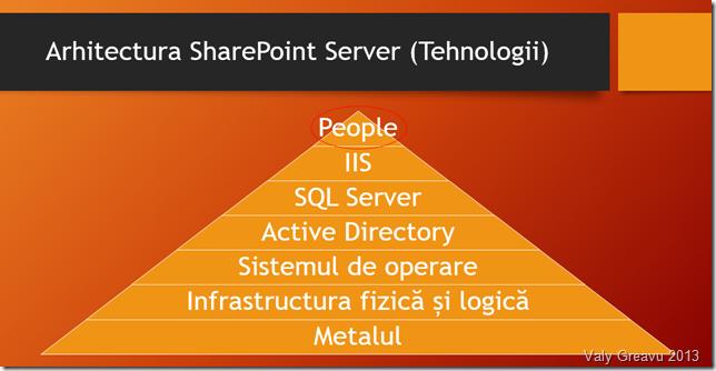Viziune proprie despre arhitectura SharePoint Server